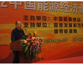 国资委李保民主任出席2012中国能源经济形势报告会作精彩发言 (4753播放)