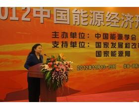 中电投资副总经理张晓鲁在2012中国能源经济形势报告会做精彩发言 (5807播放)