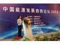 國家發改委能源經濟和發展戰略研究中心副主任 劉小麗 (1圖)