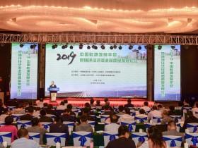 2019中国能源发展年会 (21)