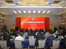 2019中国能源经济形势报告会 (21)