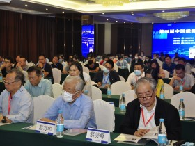 第四届中国能源与环境青年论坛 (20)